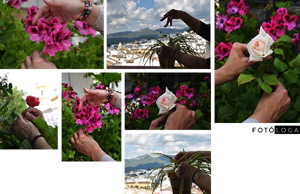 Fotos de manos con flores